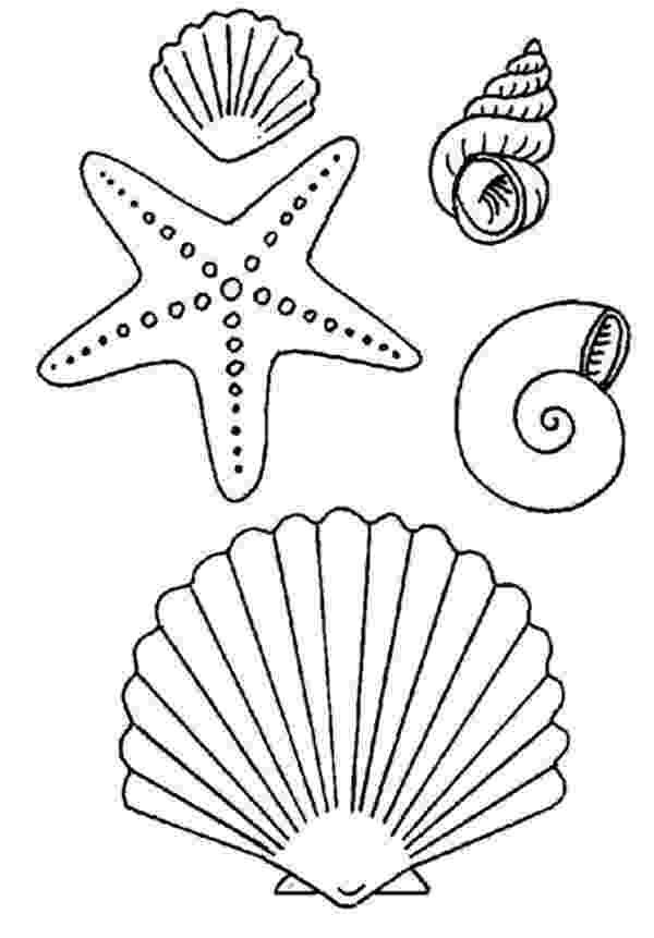 seashell coloring page seashell match up coloring page crayolacom coloring page seashell