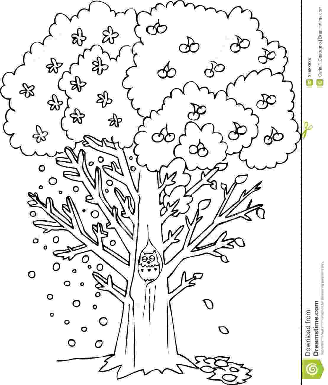 seasons coloring pages materials support ms dania naseem 2a coloring seasons pages
