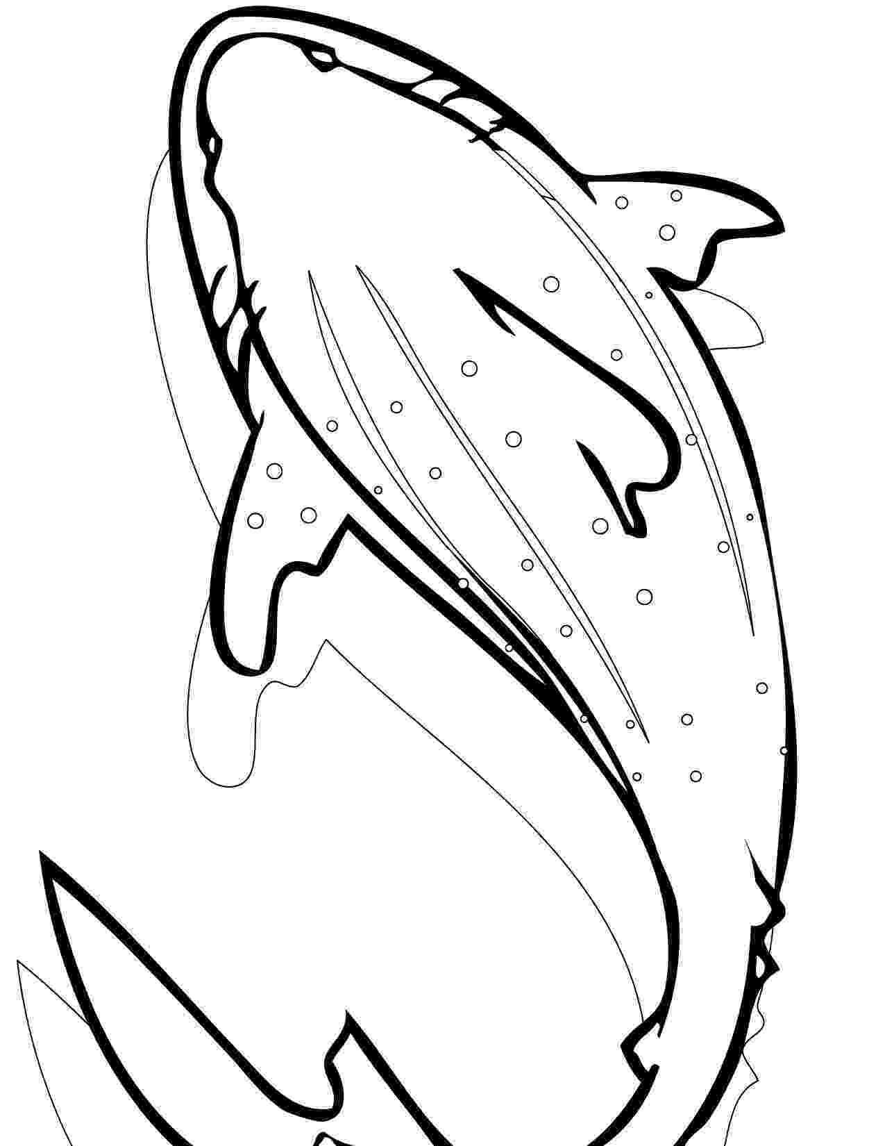 shark printables free printable shark coloring pages for kids shark printables 1 4