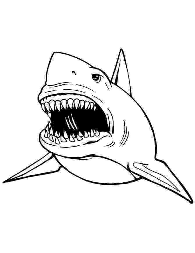 sharks coloring pages printable shark coloring pages and posters coloring sharks pages printable