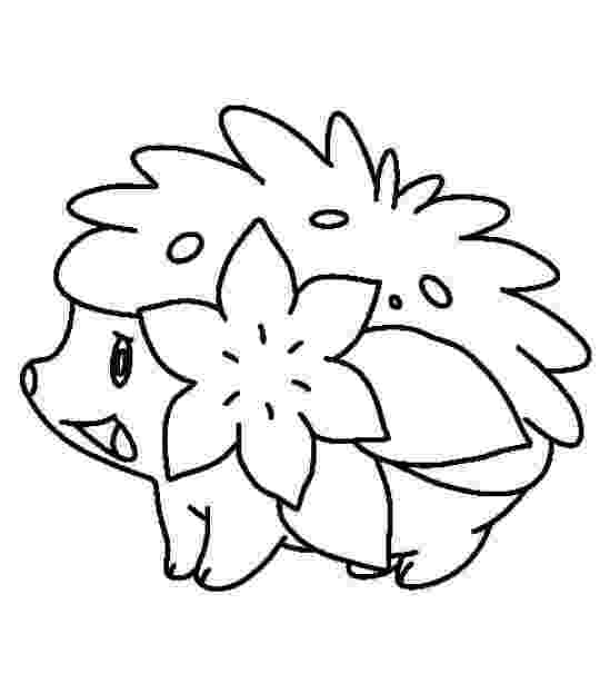 shaymin coloring sheets 22 best pokemon drawing images on pinterest drawing coloring sheets shaymin