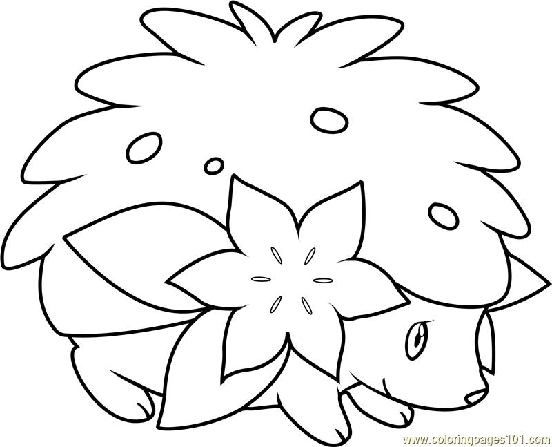 shaymin coloring sheets shaymin pokemon coloring page free pokémon coloring shaymin coloring sheets