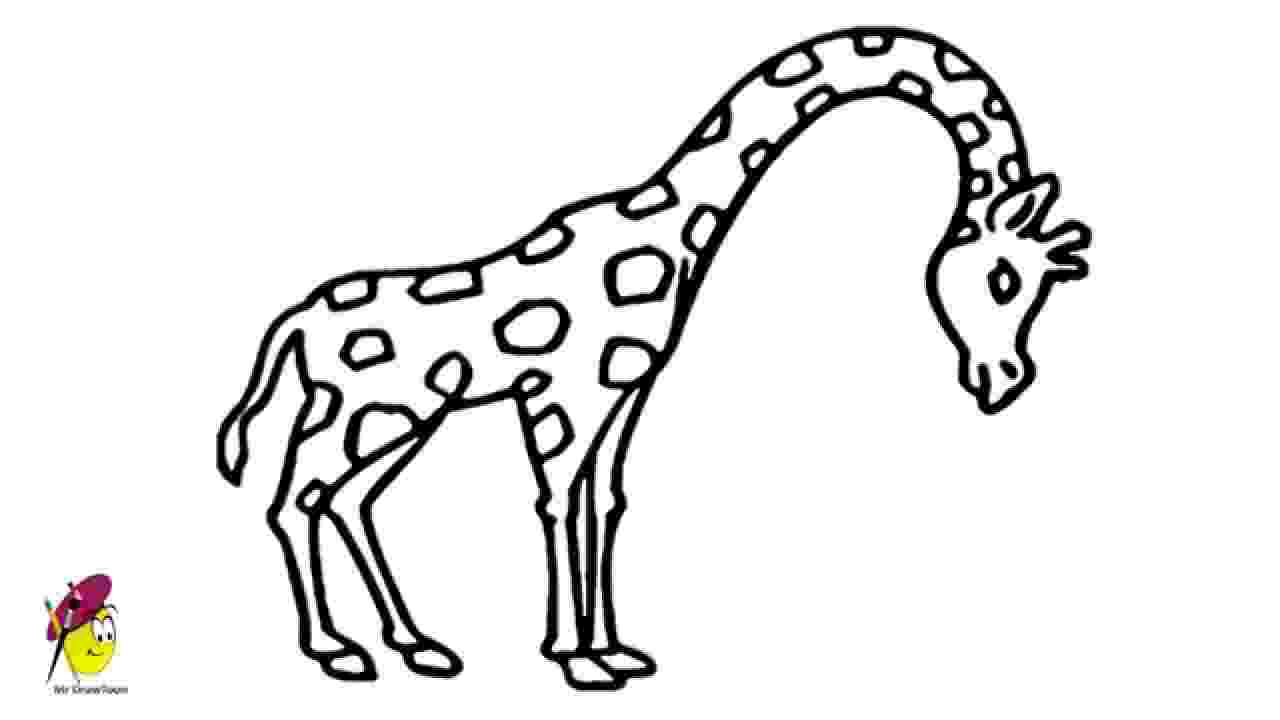 sketch giraffe giraffe easy drawing how to draw a giraffe youtube giraffe sketch