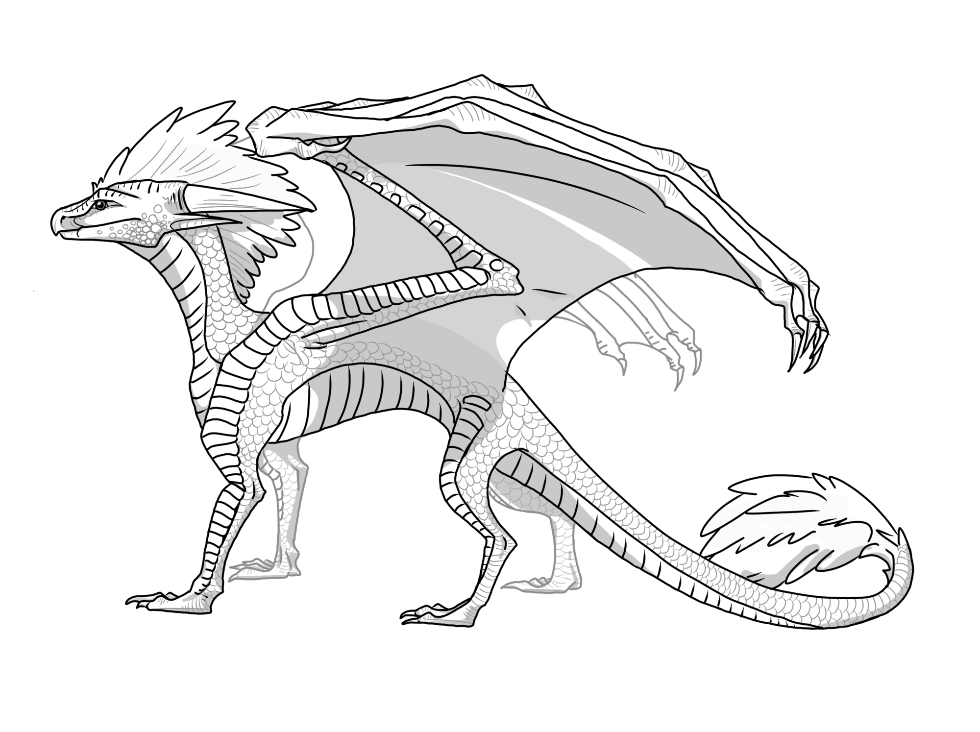 skywing dragon skywings are one of the seven dragon tribes of pyrrhia skywing dragon