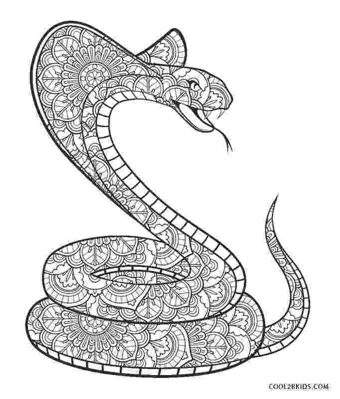 snake coloring sheet free printable snake coloring pages for kids cool2bkids snake coloring sheet