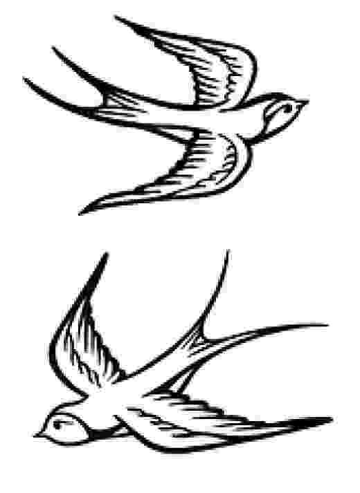 sparrow sketch drawings of birds in flight simple sparrow drawing sparrow sketch
