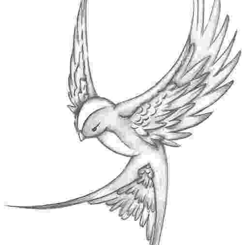 sparrow sketch sparrow sketch weasyl sketch sparrow 1 1