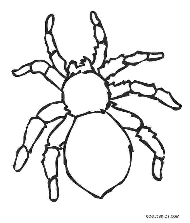 spider coloring free printable spider coloring pages for kids spider coloring