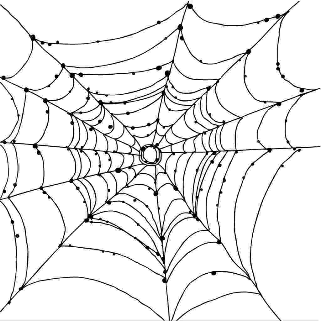 spider web coloring page free printable spider web coloring pages for kids spider page coloring web