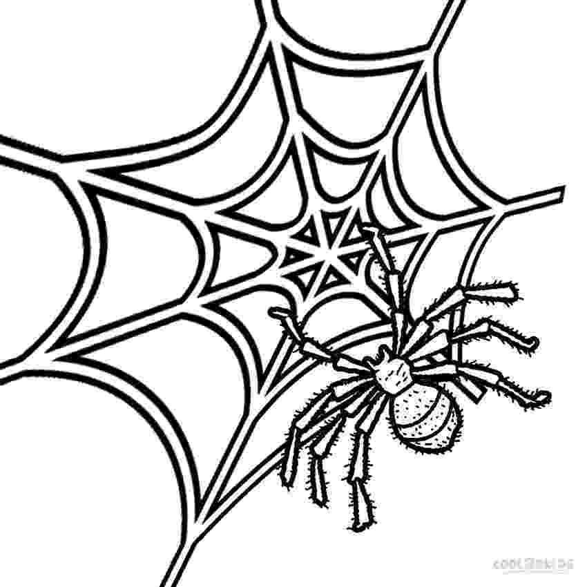 spider web coloring page printable spider web coloring pages for kids cool2bkids page web spider coloring