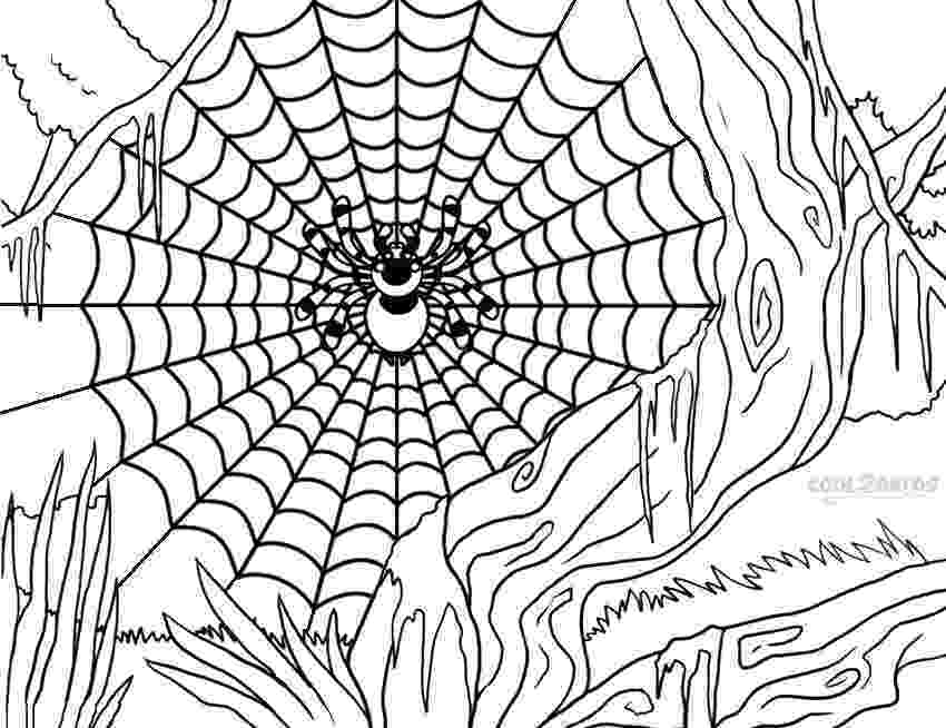 spider web coloring page printable spider web coloring pages for kids cool2bkids spider coloring page web