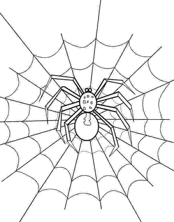 spider web coloring page spider on its web coloring page free printable coloring page coloring spider web