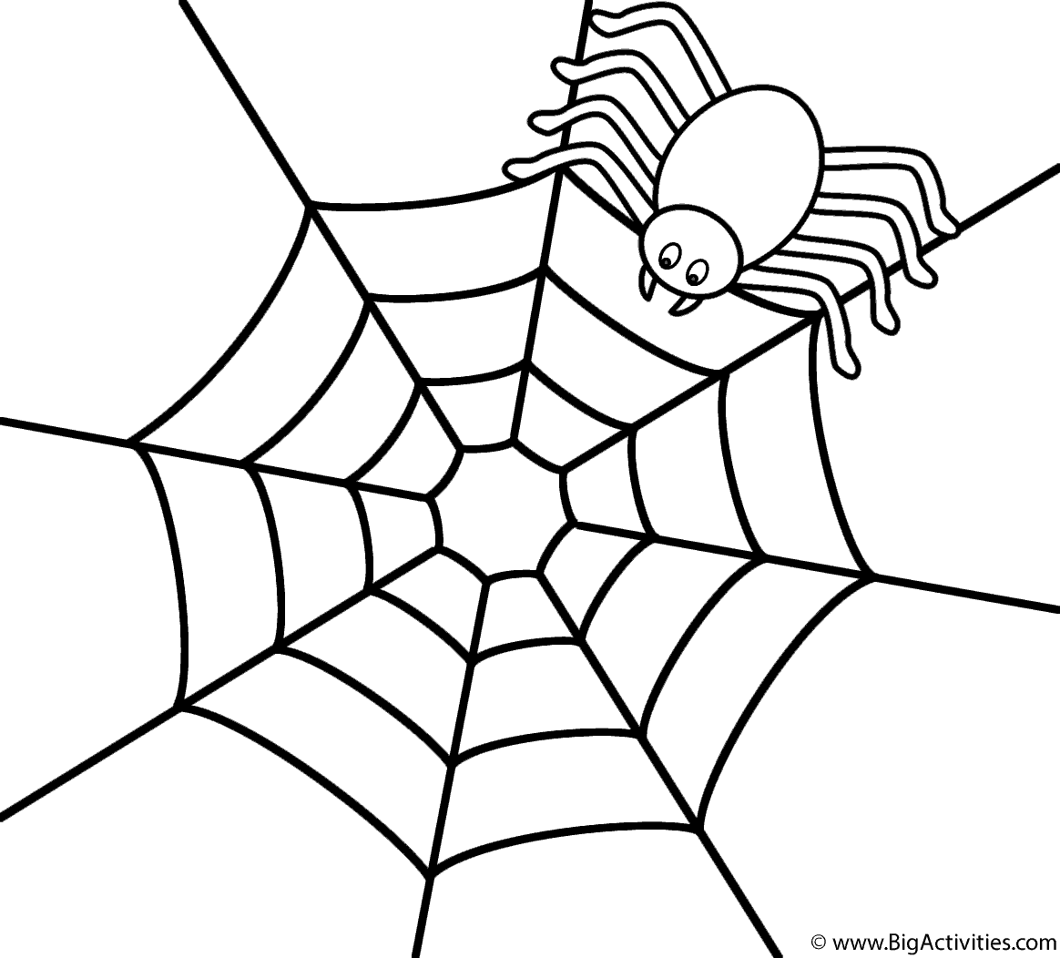 spider web coloring page spider on the top of web coloring page halloween coloring spider web page