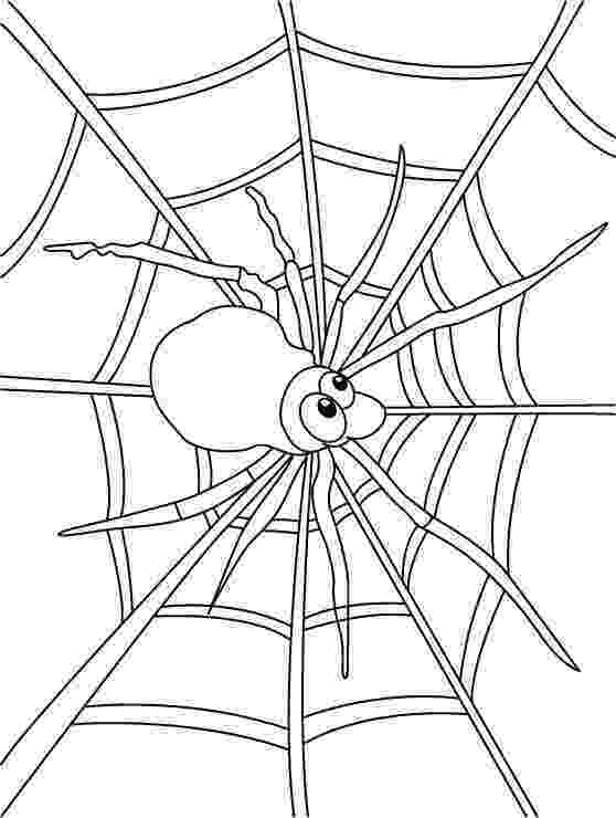 spider web coloring page spider web coloring pages download free spider web page coloring spider web