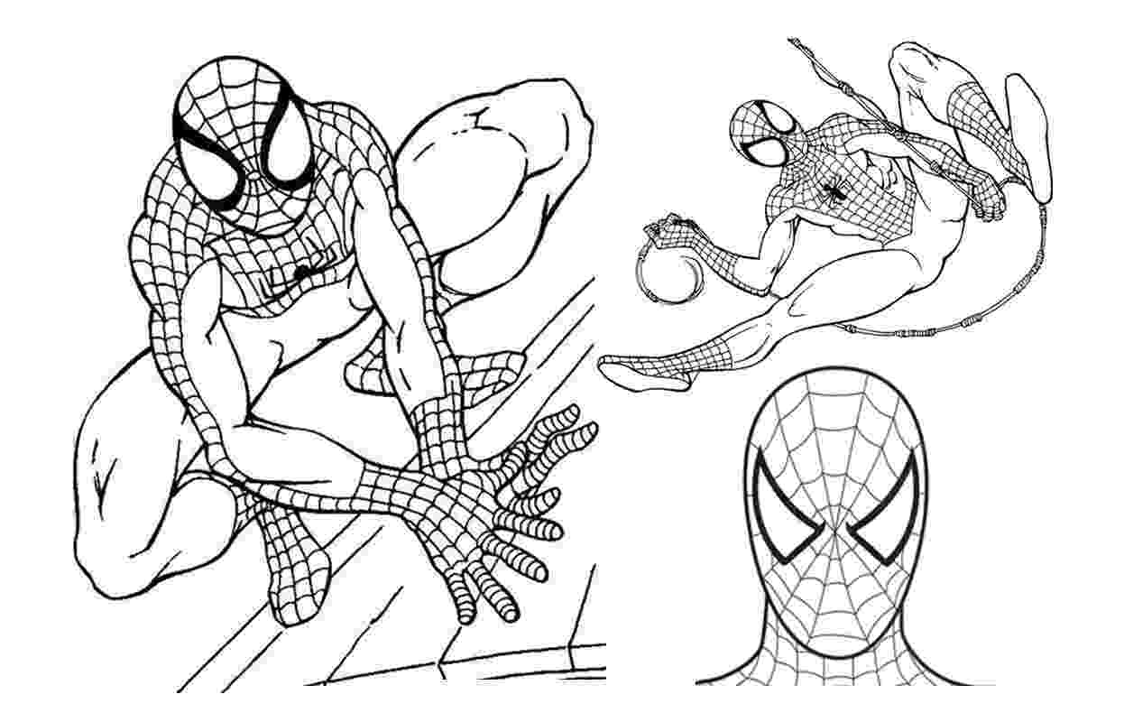 spiderman printout spiderman coloring pages collections 2011 printout spiderman