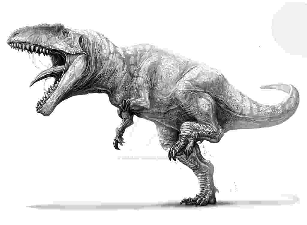 spinosaurus pictures 5 amazing facts about spinosaurus game sports realm blog pictures spinosaurus