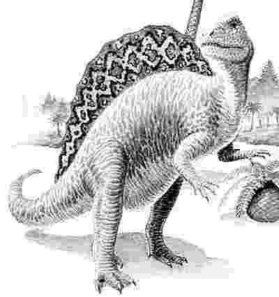 spinosaurus pictures random blog brasil espinossauro pictures spinosaurus