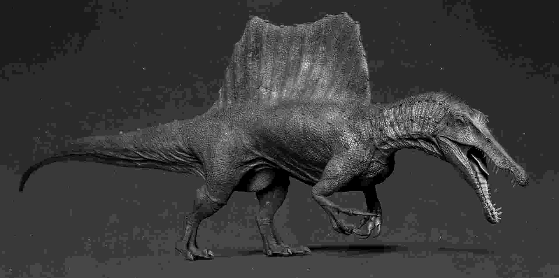 spinosaurus pictures spinosaurus aegyptiacus by acrosaurotaurus on deviantart spinosaurus pictures