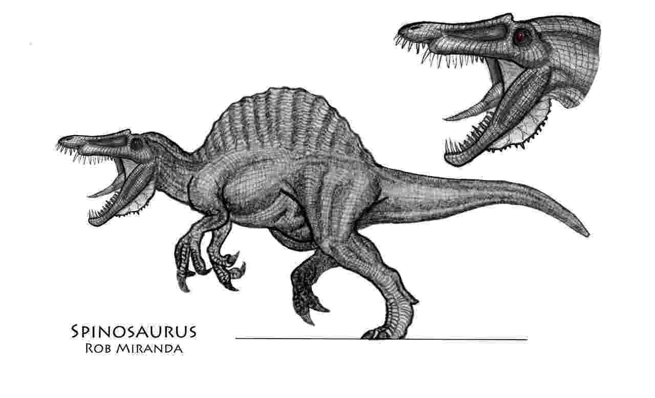 spinosaurus pictures spinosaurus concept art by yankeetrex on deviantart pictures spinosaurus