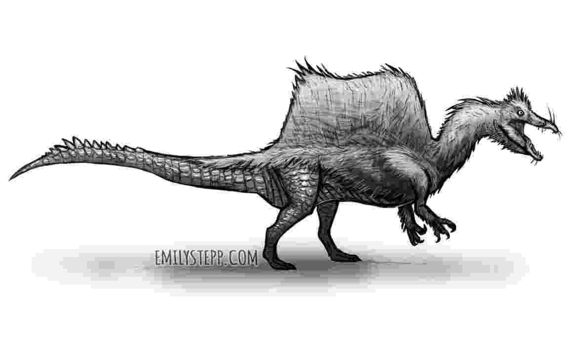 spinosaurus pictures spinosaurus natural history museum spinosaurus pictures