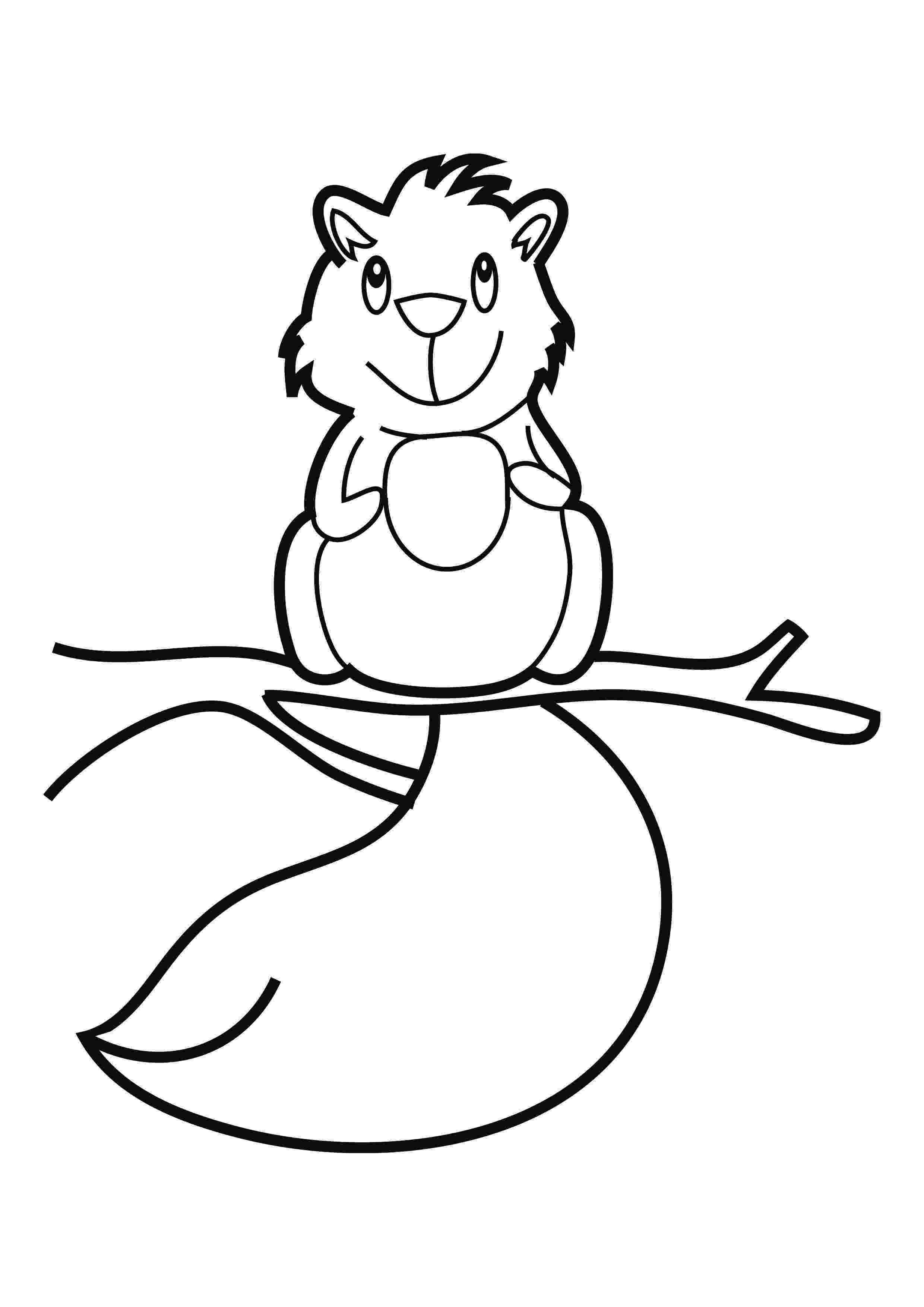 squirrel coloring page cartoon squirrel holding an acorn coloring page free squirrel page coloring