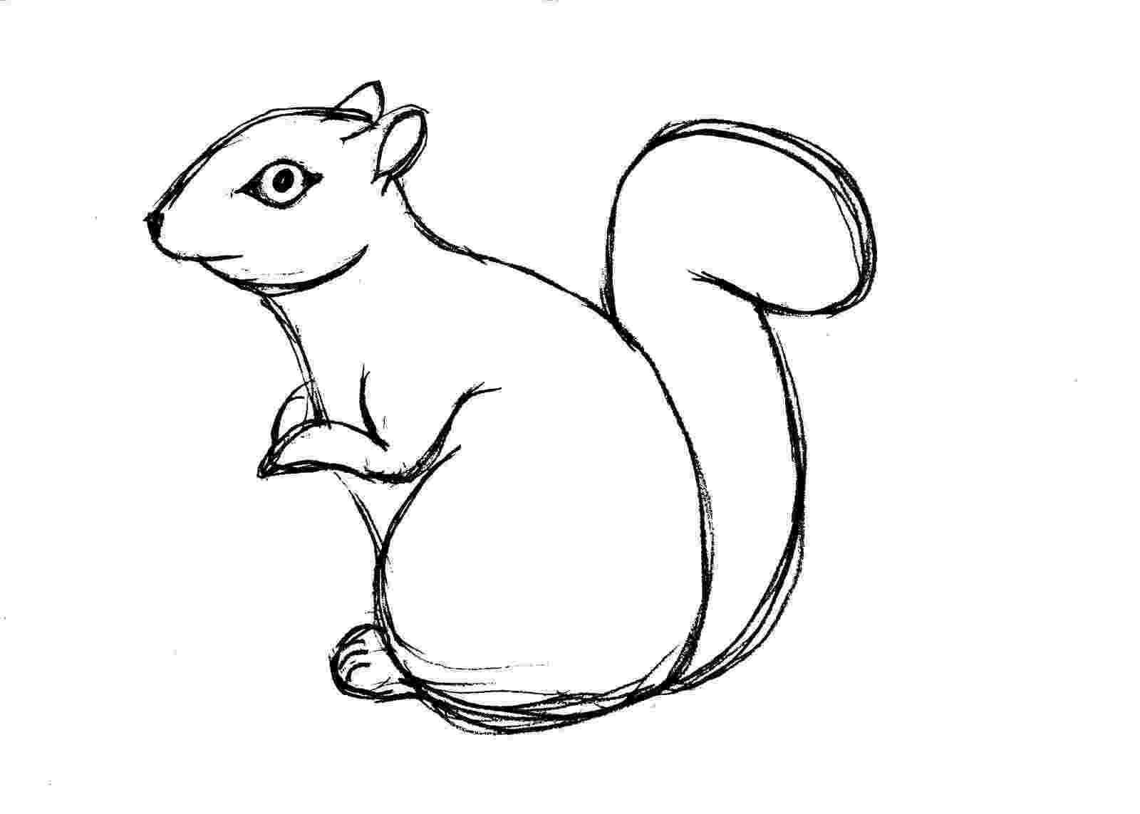 squirrel coloring page free printable squirrel coloring pages for kids animal place squirrel coloring page