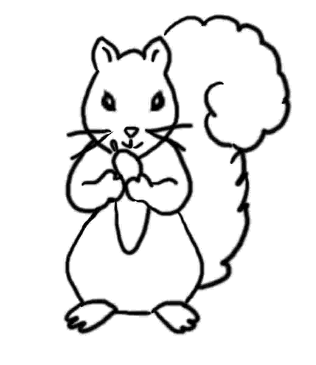 squirrel coloring page free squirrel coloring pages page coloring squirrel