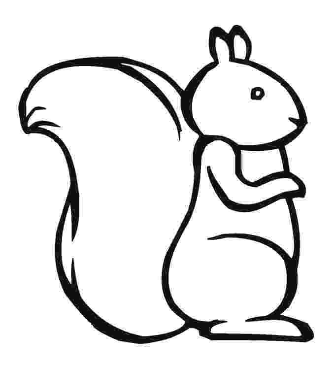 squirrel coloring page squirrels coloring pages page coloring squirrel