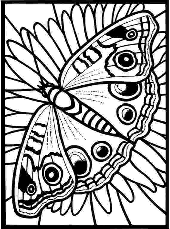 stained glass coloring pages printable expose homelessness fancy stained glass window butterfly coloring pages printable glass stained