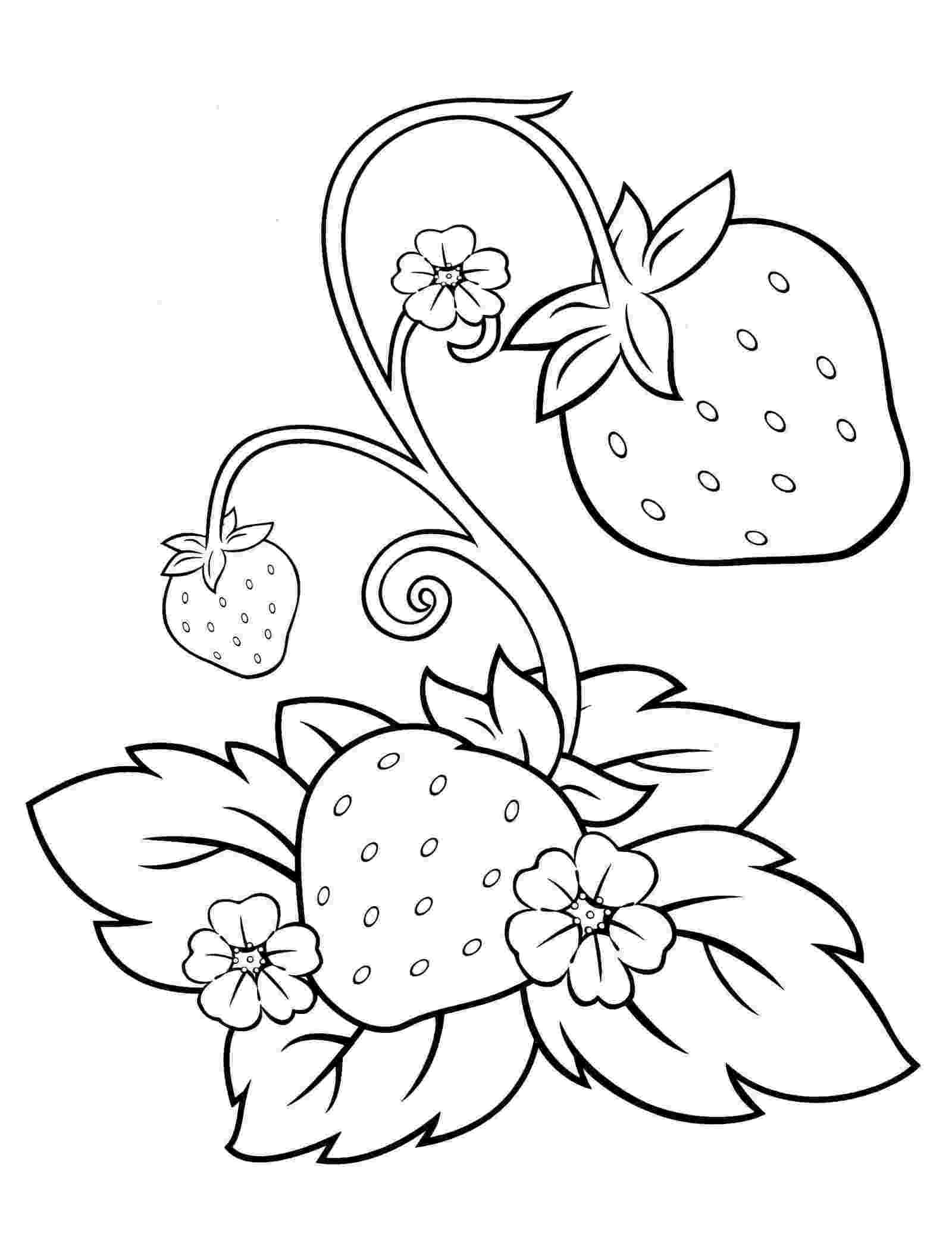 strawberry picture for coloring strawberry coloring and activity page coloring strawberry for picture