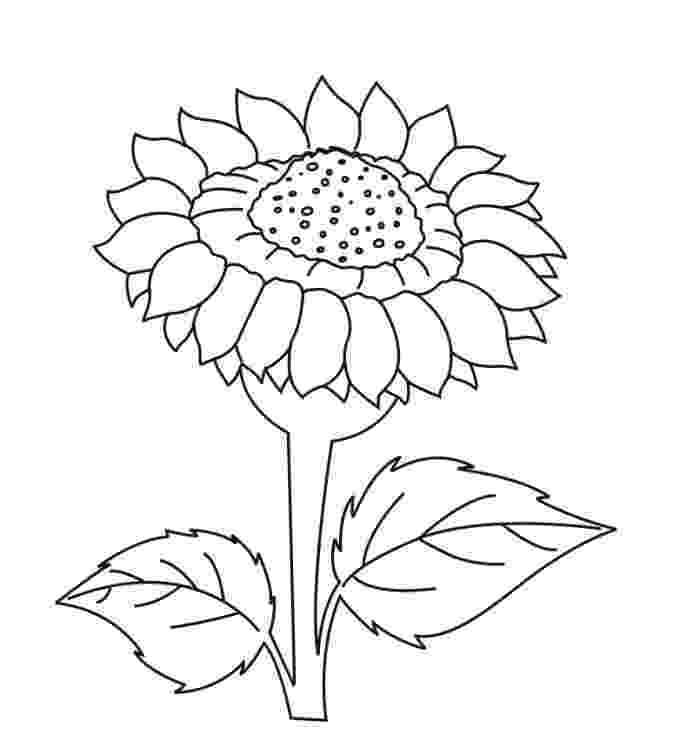 sunflower for coloring printable sunflower coloring pages for kids cool2bkids sunflower for coloring 1 1