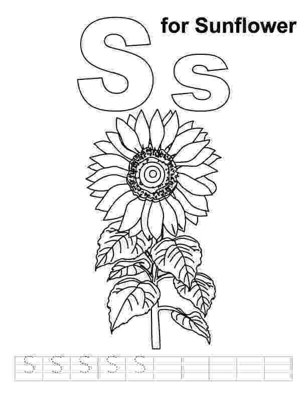 sunflower for coloring sunflower coloring book sketch coloring page for sunflower coloring