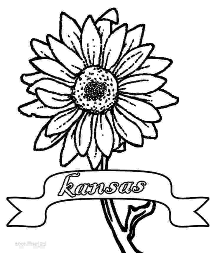 sunflower for coloring sunflower coloring pages for preschoolers coloringrocks coloring for sunflower