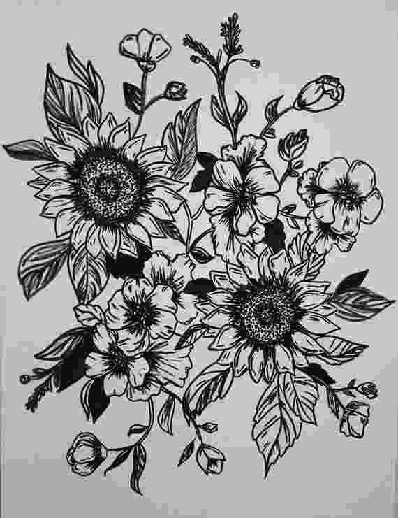 sunflower sketch best sunflower field drawings illustrations royalty free sketch sunflower