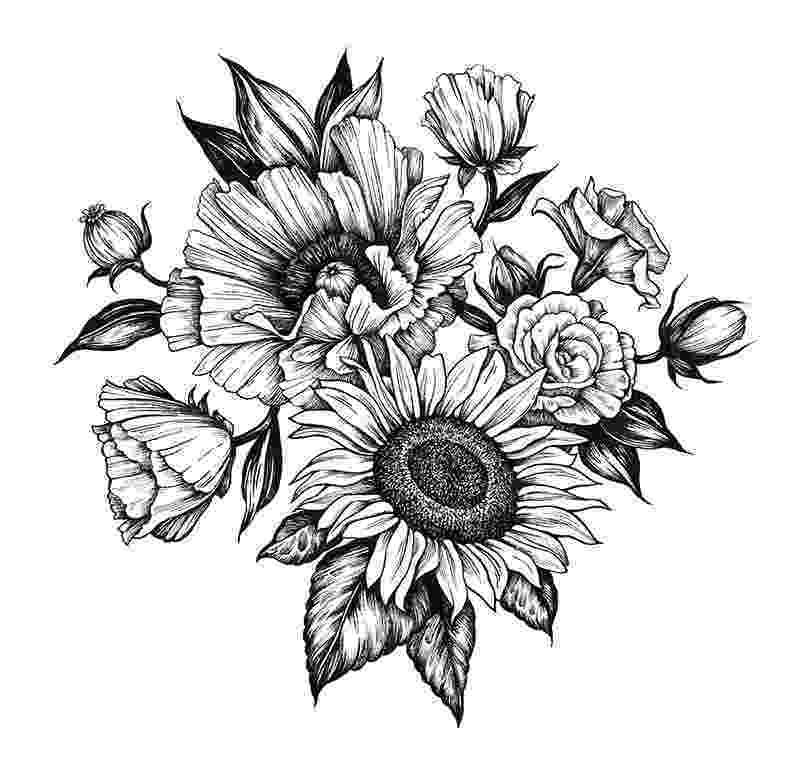 sunflower sketch sunflower drawing by bari rhys sunflower sketch