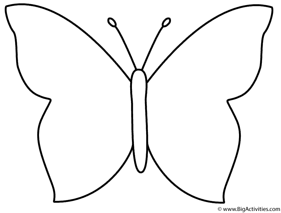 template of butterfly for colouring butterfly outlines for tracing david simchi levi template butterfly for of colouring