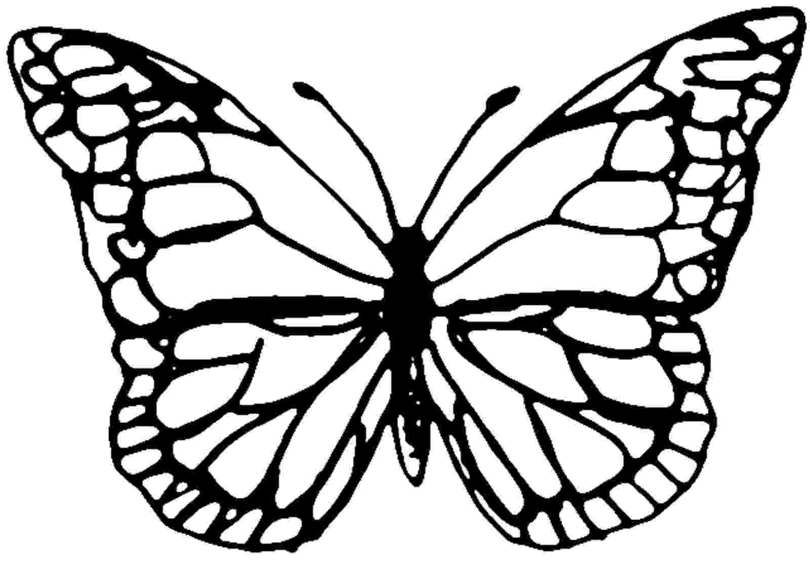 template of butterfly for colouring coloring page butterfly printable butterfly coloring template of colouring butterfly for