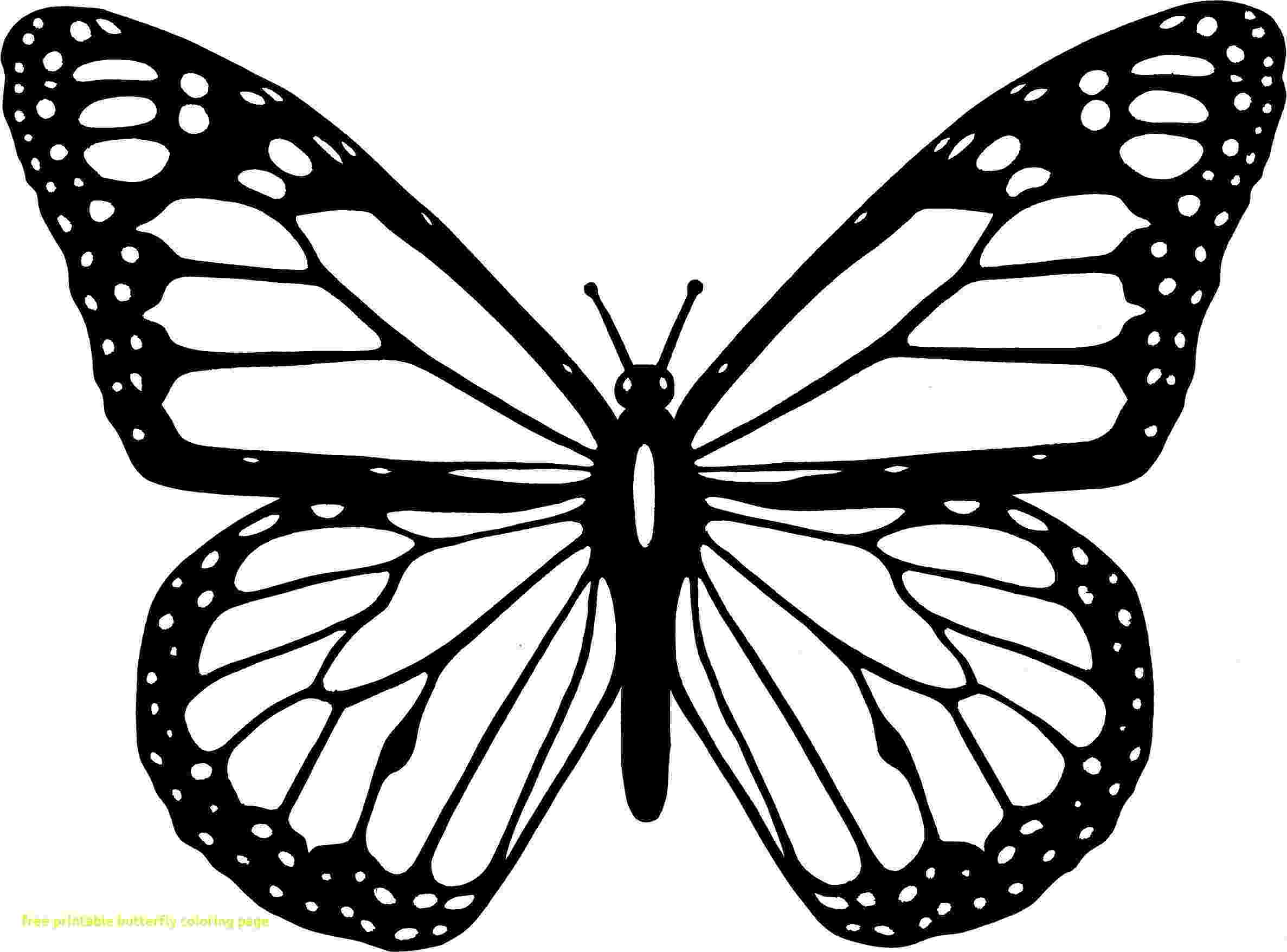 template of butterfly for colouring coloring page of butterfly new easily colouring pages template for butterfly of colouring