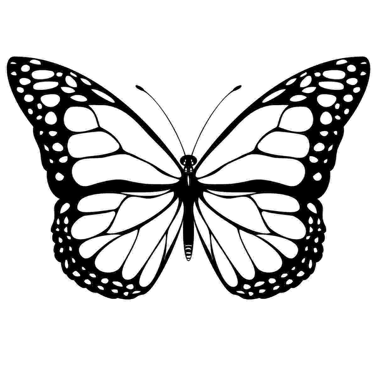 template of butterfly for colouring free printable butterfly coloring pages for kids colouring butterfly for of template