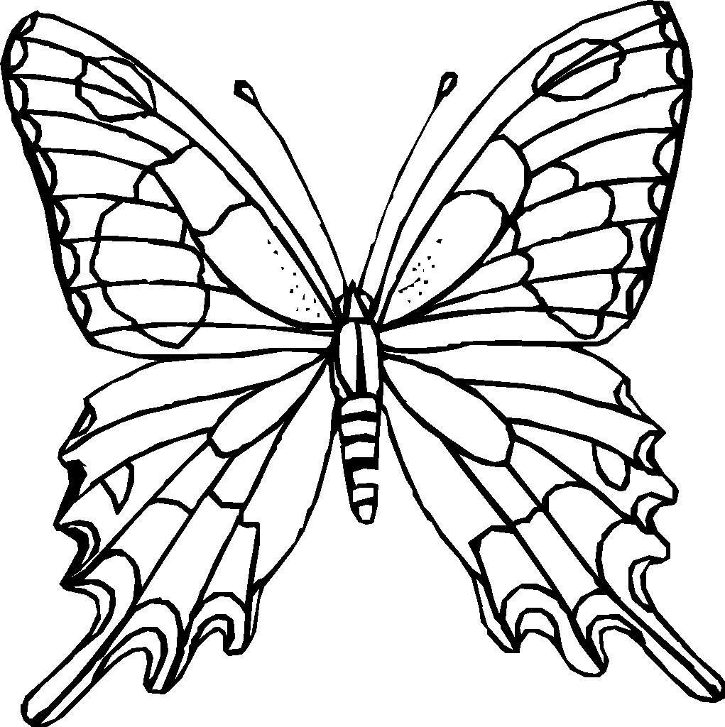 template of butterfly for colouring monarch butterfly coloring pages batman coloring pages butterfly of colouring for template