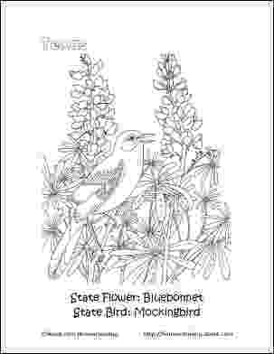 texas coloring pages 80 best texas coloring book images on pinterest coloring texas pages