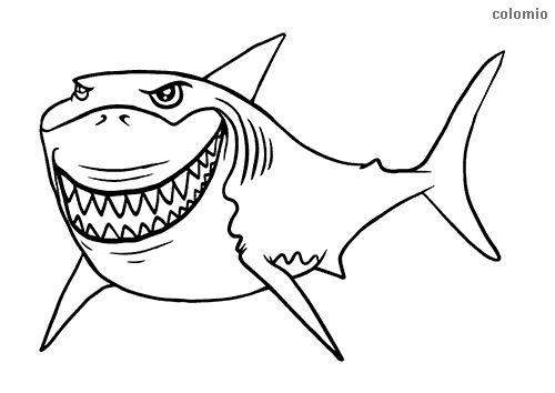 tiburones para dibujar cómo dibujar un tiburón paso a paso fácilmente youtube dibujar tiburones para