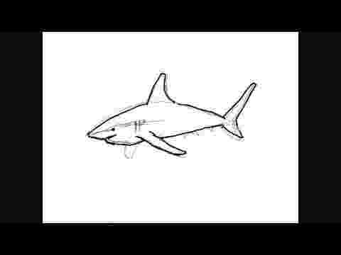 tiburones para dibujar resultado de imagen para dibujos de tiburones dibujos para tiburones dibujar