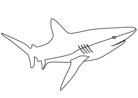 tiburones para dibujar shark coloring page free printable coloring pages tiburones para dibujar