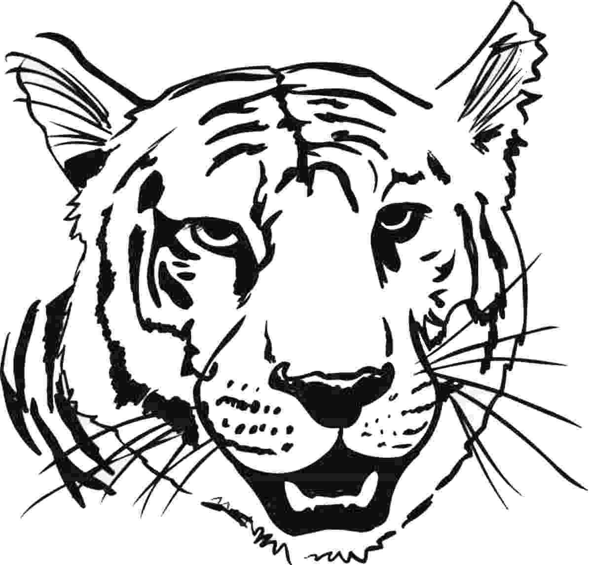 tiger pictures to print and color free printable tiger coloring pages for kids tiger print pictures to and color