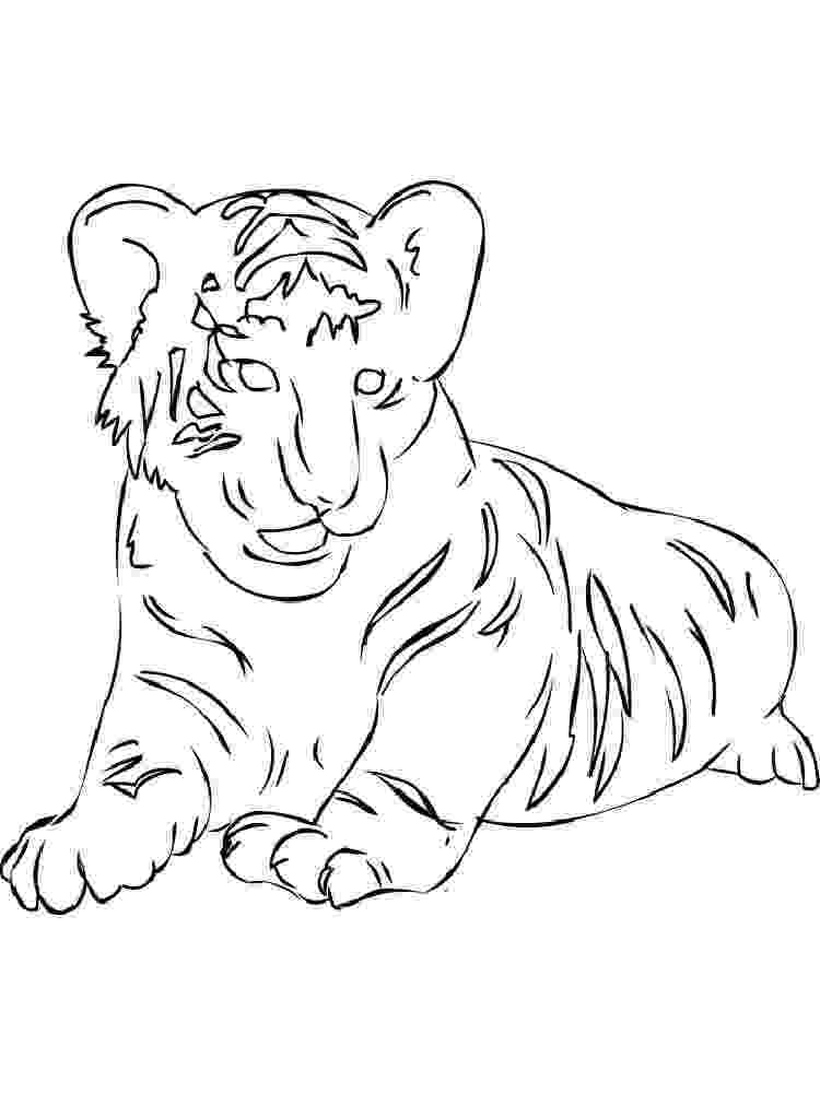 tiger pictures to print and color tigers coloring pages download and print tigers coloring to color and tiger pictures print