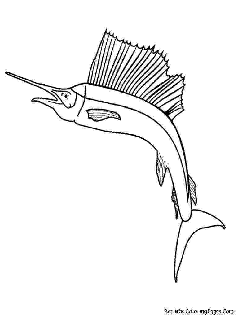 tropical fish coloring pages fish coloring child coloring pages tropical fish coloring