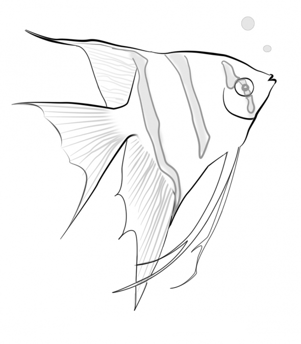 tropical fish coloring pages tropical fish coloring pages getcoloringpagescom fish tropical coloring pages