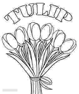 tulips to color free printable tulip coloring pages for kids tulips color to