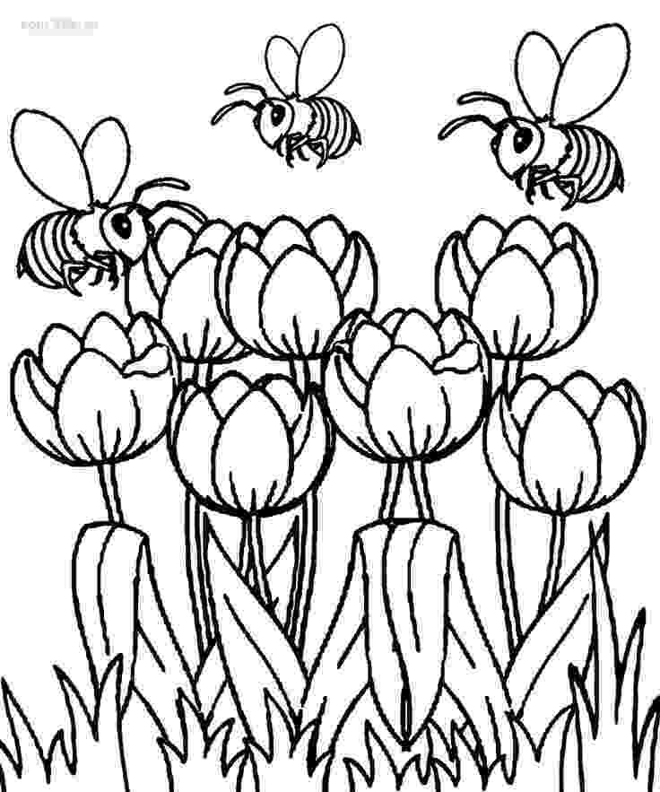 tulips to color printable tulip coloring pages for kids cool2bkids tulips color to